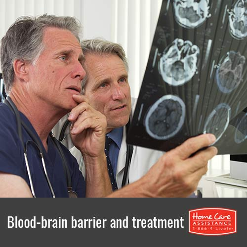How Loosening the Blood-Brain Barrier Allows for Effective Treatment in Dallas, TX